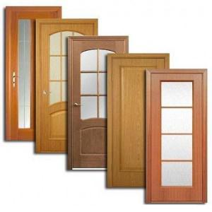 Двери, дверные блоки Камышлова