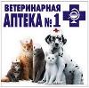 Ветеринарные аптеки в Камышлове